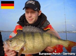 Perch Germany